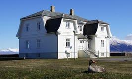 Maison et oie de Reykjavik Hofdi photos stock