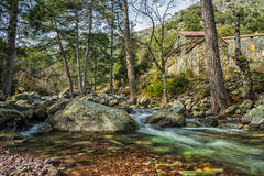 Maison Forestiere durch Tartagine-Fluss in Korsika Lizenzfreies Stockbild