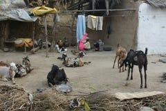 Maison indienne en couleurs Photo libre de droits