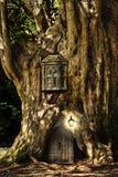 Maison miniature de conte de fées d'imagination dans l'arbre Photographie stock libre de droits