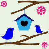Maison neuve d'emboîtement d'amour d'oiseau Photo stock