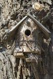 Maison peu commune d'oiseau Image libre de droits