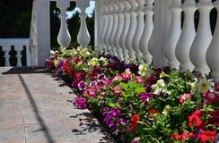 Maison résidentielle à Sébastopol Image libre de droits