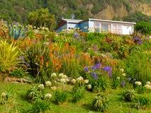 Maison rêveuse rurale dans le jardin normal fleurissant abondant Photographie stock