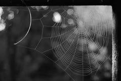 Maison sans propriétaire, le Web des rêves images stock