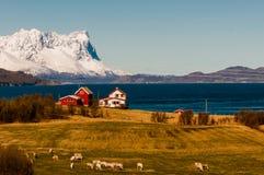 Maison traditionnelle n Laponie de bois de construction Image libre de droits