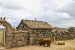 Maison traditionnelle près des tombes de Silustani dans les Andes péruviens, calembour images stock
