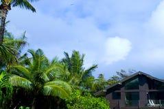 Maison tropicale images libres de droits