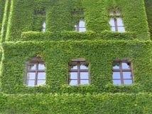 Maison verte Photos stock