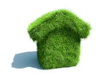 Maison verte Photographie stock