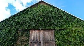 Maison verte avec le ciel bleu au parc national, Thaïlande Image stock