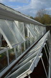 Maison verte de grand jardin et cloche en verre Image stock