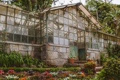 Maison verte rustique Photographie stock