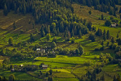 Maisons à distance hautes sur la montagne, forêt images libres de droits