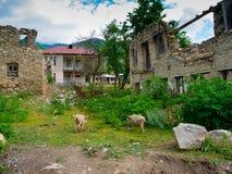 Maisons abandonnées Images libres de droits