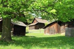Maisons boisées derrière l'arbre photographie stock libre de droits