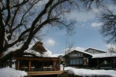 Maisons couvertes de chaume avec des caractéristiques japonaises photo libre de droits