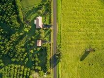 Maisons d'herbe verte et de campagne au coucher du soleil Photographie stock libre de droits