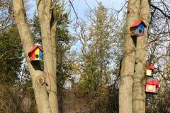 Maisons d'oiseau Images libres de droits
