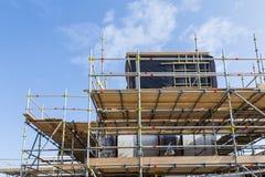 Moutons de kerry image stock image du provoquant for Assurance chantier construction maison