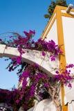 Maisons de décoration au Porto Rico photos stock