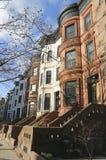 Maisons de grès célèbres de New York City dans le voisinage de tailles de perspective à Brooklyn Photo stock