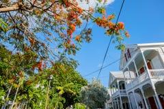 Maisons de Key West Photos libres de droits