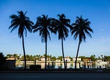 Maisons de luxe au canal à Miami Photos libres de droits