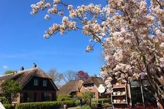 Maisons de vacances aux Pays-Bas photo stock