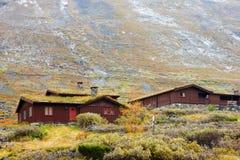 Maisons norvégiennes typiques Photographie stock libre de droits