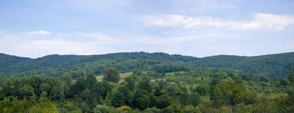 Maisons panoramiques dans la forêt Photo stock