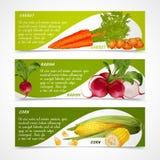 Maisrettich-Karottenfahnen Lizenzfreies Stockbild