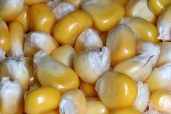 Maisstapel Lizenzfreies Stockfoto