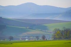 Maisweidelandschaft mit Bergen im Hintergrund Lizenzfreies Stockbild