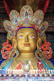 Maitreya Buddha statue. Stature of Buddha in a temple inside a monastery in Ladakh province of India Stock Photos
