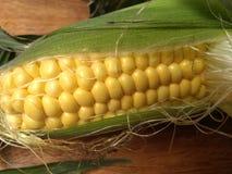 Corn yellow grain maize kitchen royalty free stock image