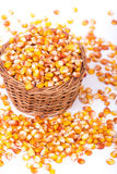 Maize beans in a wooden basket Stock Photography