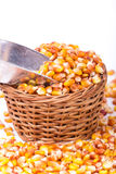 Maize beans in a wooden basket Royalty Free Stock Images