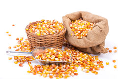Maize beans in a wooden basket Stock Photo