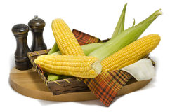 Maize cobs Royalty Free Stock Photography