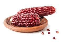 Maize Cobs in the Ceramics Saucer Royalty Free Stock Images
