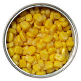 Maize corn Stock Photography