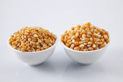 Maize corn. Compare maize corn of different grade Royalty Free Stock Images