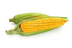 Maize corn Stock Photo