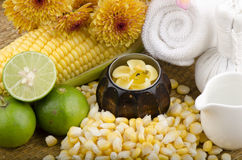 Maize, Corn (Zea mays Linn.) natural spa Royalty Free Stock Images