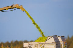 Maize crop chopper ejection tower Stock Photo
