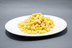 Maize grains Royalty Free Stock Photography