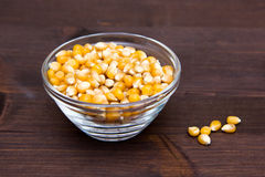 Maize grains dried on wood Stock Photography