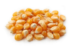 Maize kernels Royalty Free Stock Images