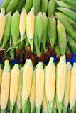 Maize at market Royalty Free Stock Photo